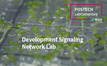 Development Signaling<br>Network Lab