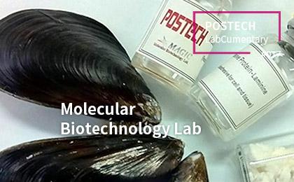 Molecular Biotechnology Lab