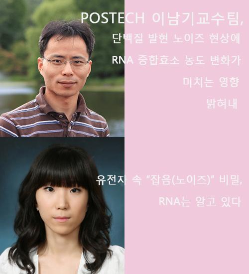 이남기 교수팀