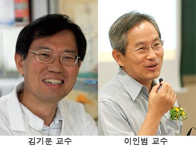 김기문 교수, 이인범 교수