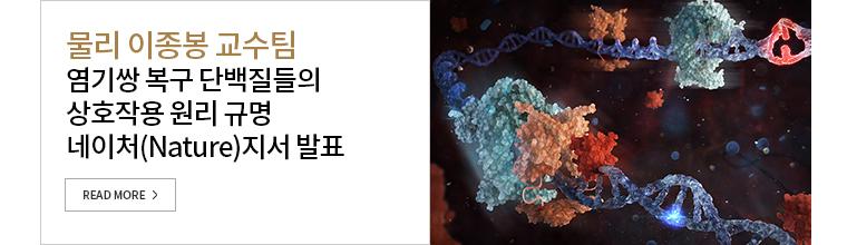 물리 이종봉 교수팀-국제공동연구팀과 염기쌍 복구 단백질들의 상호작용 원리 네이처(Nature)지서 발표