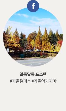 알록달록 포스텍 #가을캠퍼스#가을아가지마