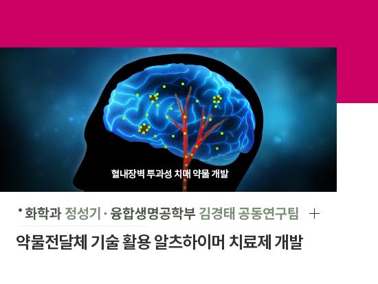 화학과 정성기, 융합생명공학부 김경태 공동연구팀 - 약물전달체 기술 활용 알츠하이머 치료제 개발