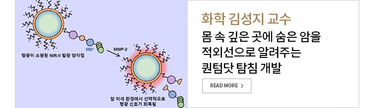 화학 김성지 교수 몸 속 깊은 곳에 숨은 암을 적외선으로 알려주는 퀀텀닷 탐침 개발