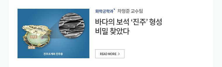 화학공학과 차형준교수팀 바다의 보석 진주 형성 비밀 찾았다.