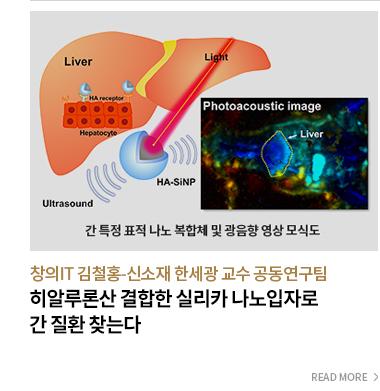 히알루론산 결합한 실리카 나노입자로 간 질환 찾는다 창의IT 김철홍 신소재 한세광 교수 공동연구팀 - READ MORE