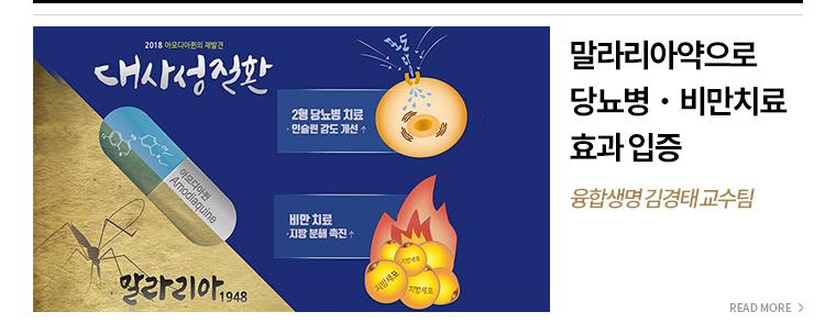 말라리아약으로 당뇨병,비만치료 효과 입증 융합생명 김경태 교수팀 - READ MORE