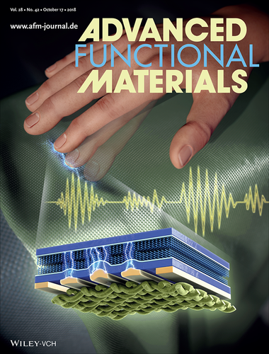 www.afm-journal.de Advanced Functional Materials 표지 이미지
