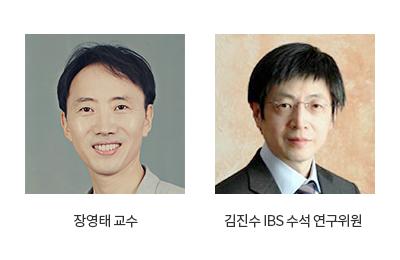 연구성과_상세_장영태교수_김진수IBS수석연구위원