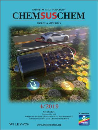 리튬·황배터리 포스터