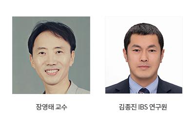 연구성과_상세_장영태교수_김종진IBS연구원