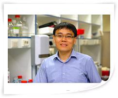 POSTECH 생명과학과 황철상 교수팀, Cell지 통해 새로운 단백질 ...